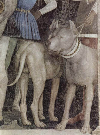 Как выглядели первые бульмастифы Mantegna_mastiffs2_detail